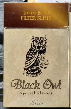 越南黑猫头鹰Black Owl价格图一览表
